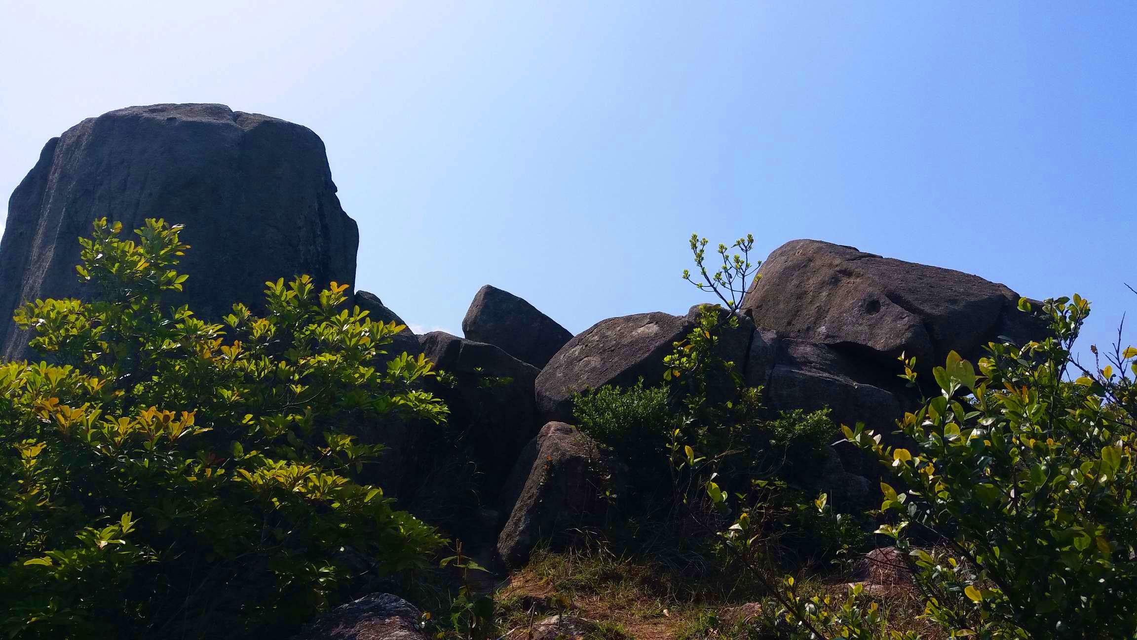 老虎騎石海景